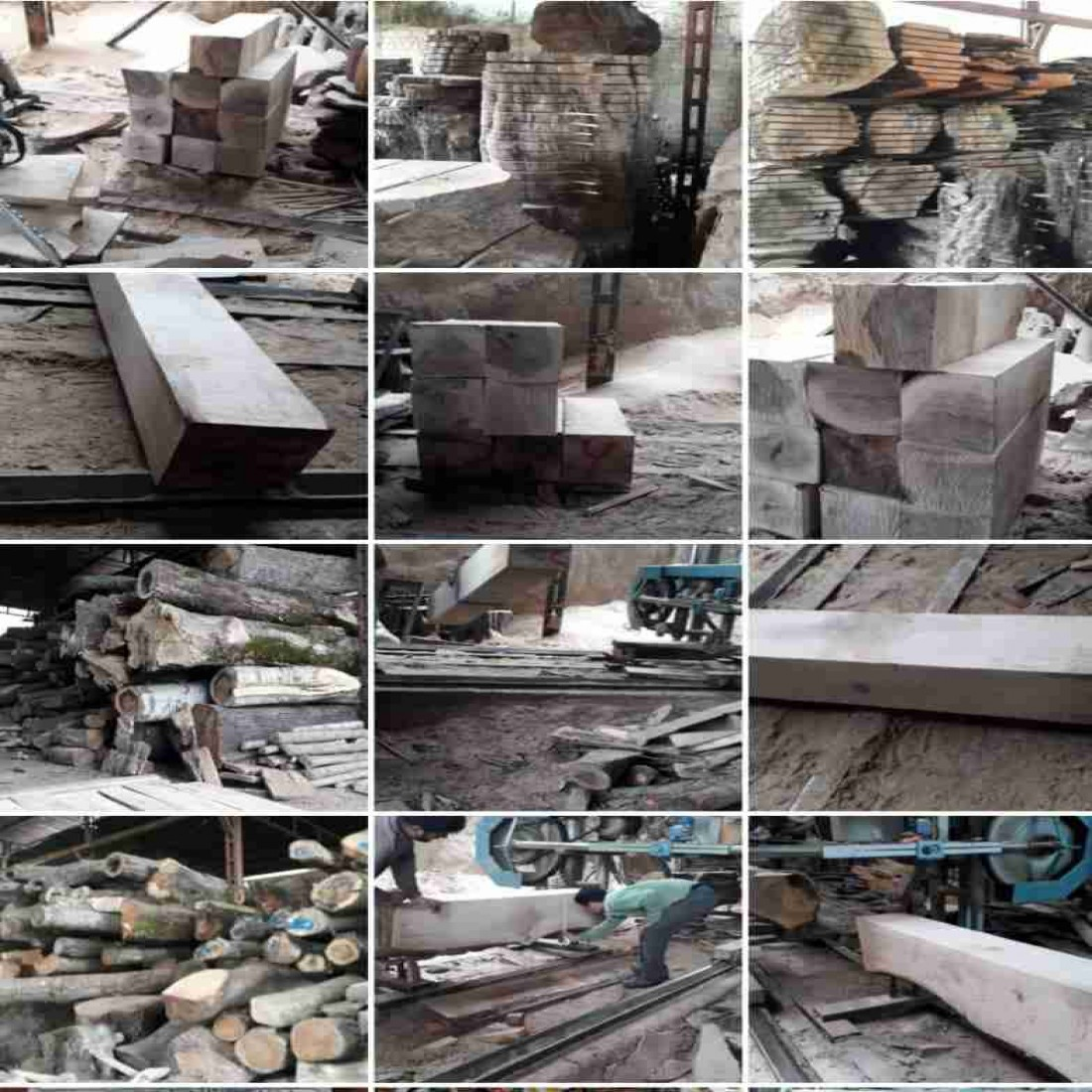 فروش انواع چوب لنج